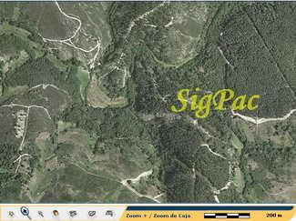 La comunidad de Montes de Pena do Souto solicita la clasificación de una parte del monte de Castrelo de Cima y Florderrei
